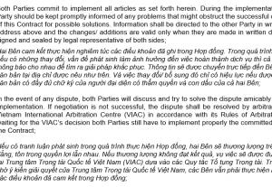 Dịch thuật Anh-Việt & Việt-Anh chính xác, Nhận đánh máy